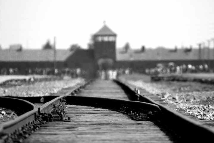 The Tattooist of Auschwitz – is it ignoble to criticise a noble book?