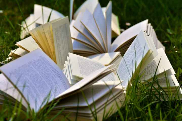 Bingeing on Books
